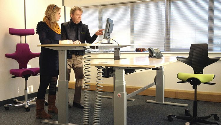 Sit Stand Desk | The Back In Action Desk. Shown Here In Silver.