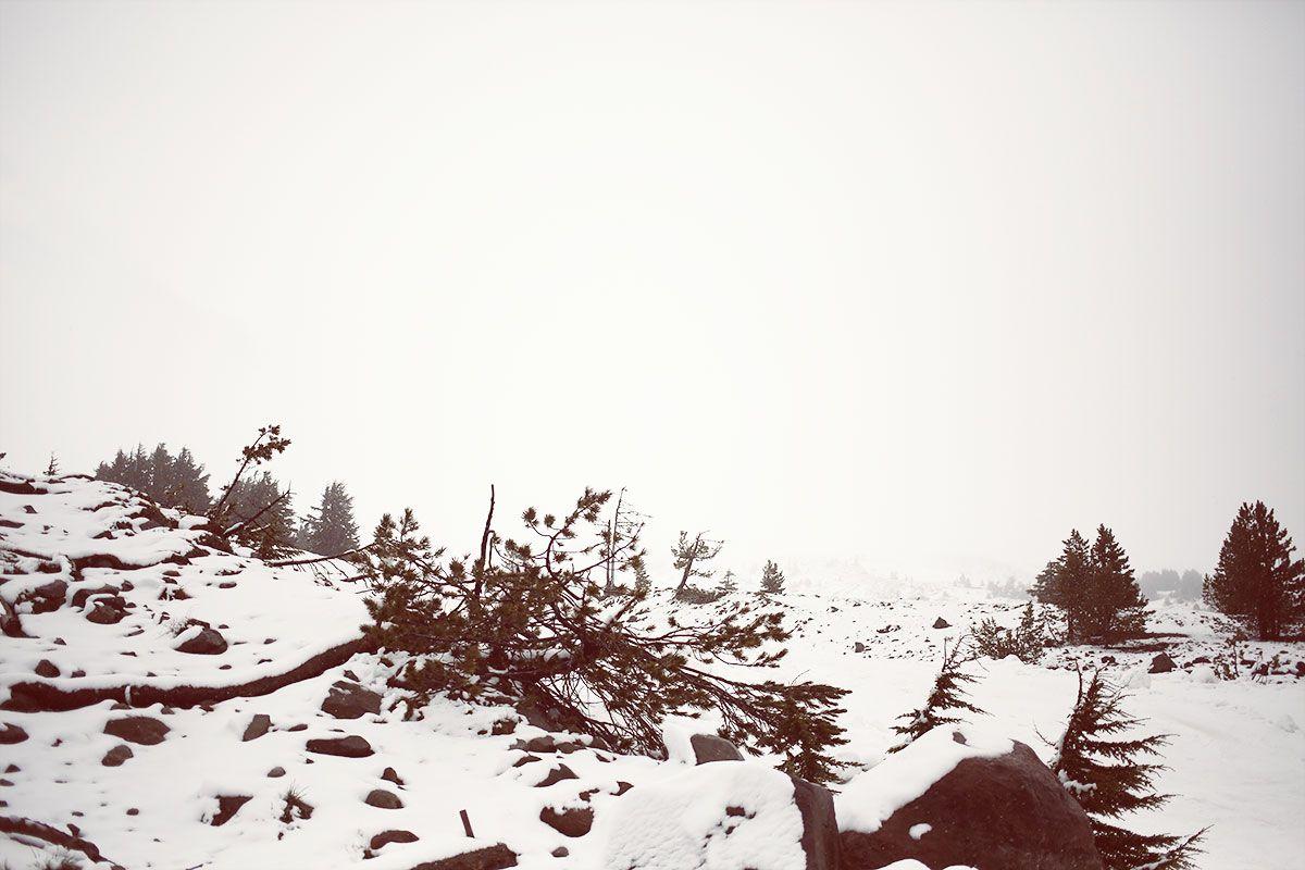 Timberline, Mount Hood, Oregon