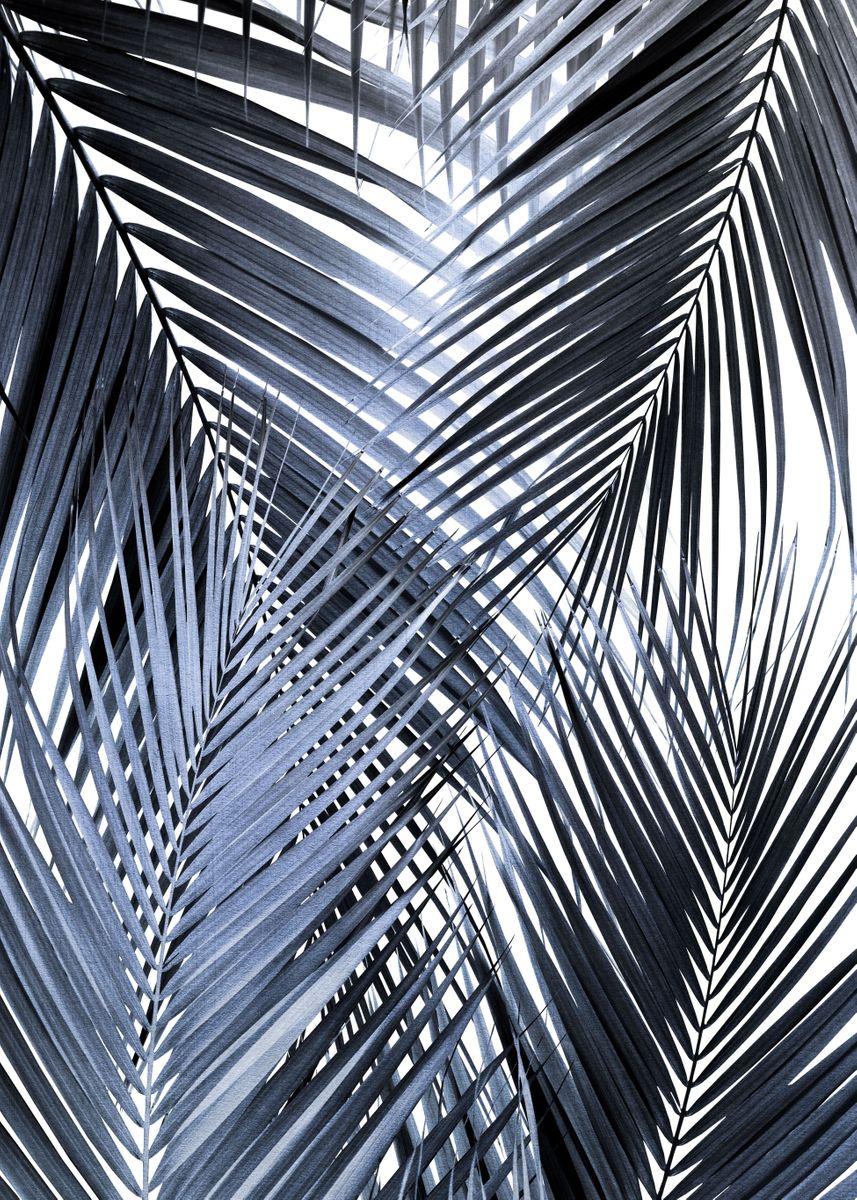 Retro Palms Black Jungle Wallpaper Tropical Wallpaper Leaf Wallpaper