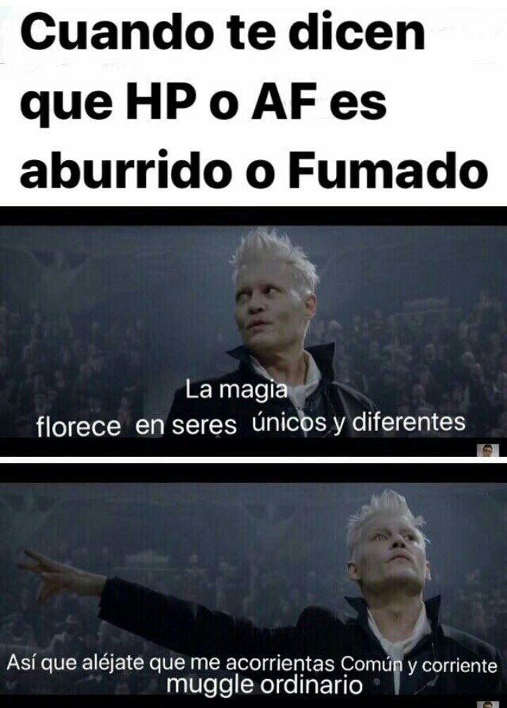 Casas de Hogwarts – Memes 4