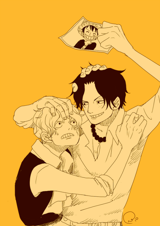 The Overprotective Brothers Ace Sabo Fighting Over Luffy S Pic