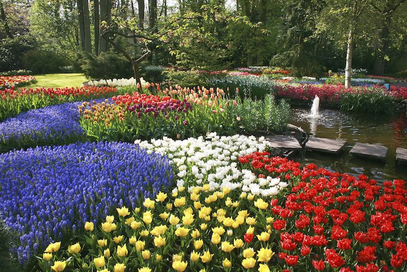 25 Magical Flower Bed Ideas And Designs Beautiful Flowers Garden Flower Garden Design Flower Bed Designs