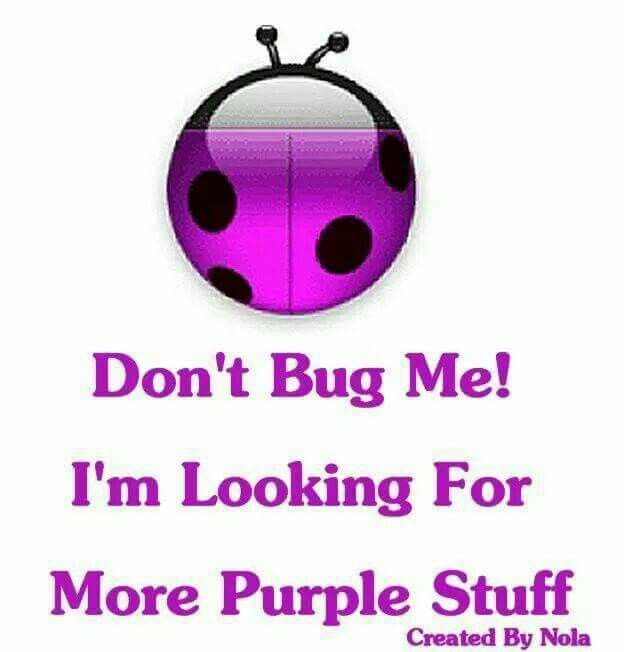 I'm looking for purple  don't bug me