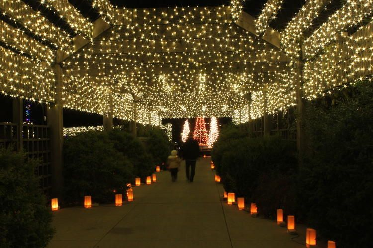 Exceptionnel Wichita Ks Botanical Gardens PICTURES | Photos: Illuminations At Botanica  Gardens