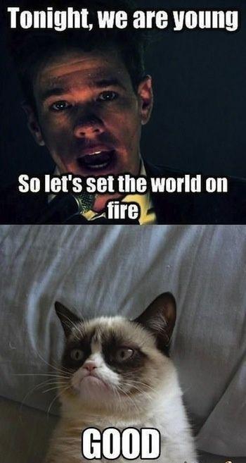 Sounds Good To Me Gc Funny Grumpy Cat Memes Grumpy Cat Humor Cat Quotes Funny