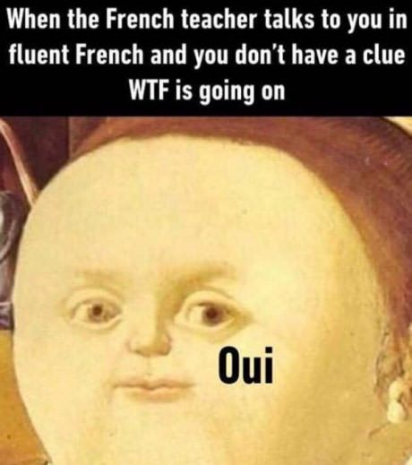 Je M 039 Appelle Fromage Memes Sarcastic French Meme Funny French