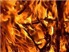 combustión de la madera