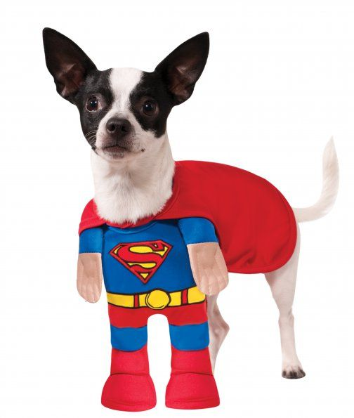 Superman Halloween Dog Costume With Arms Pet Halloween