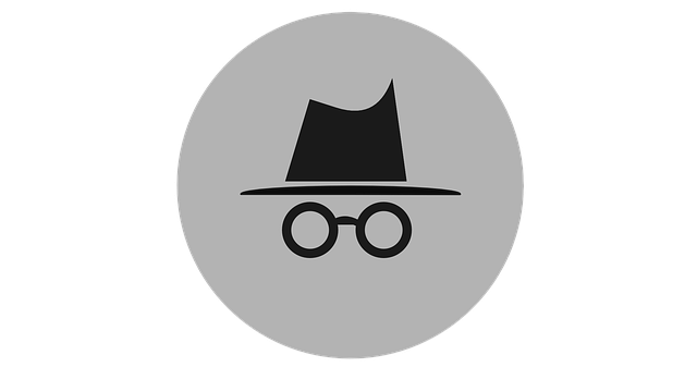 A Few Good Reminders For Safer Internet Day In 2020 Incognito Safe Internet Android Features