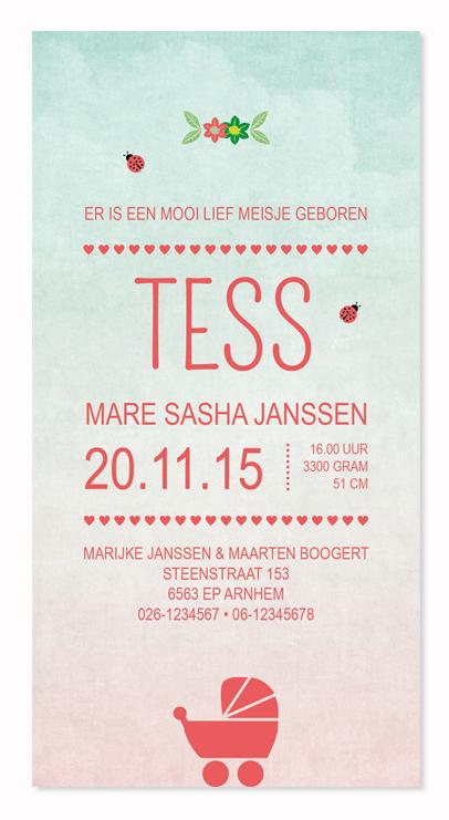 Geboortekaartje Tess #geboorte #geboortekaartje #zwanger #pregnant #birthcards