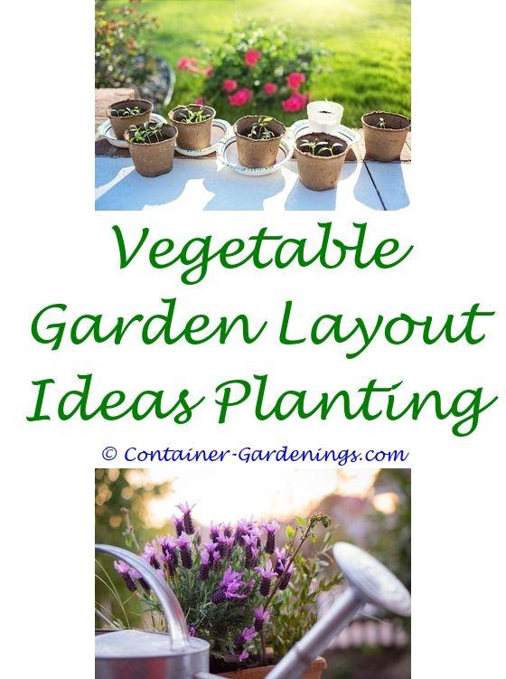 Garden Online   Modern garden design, Garden arches and Garden trees