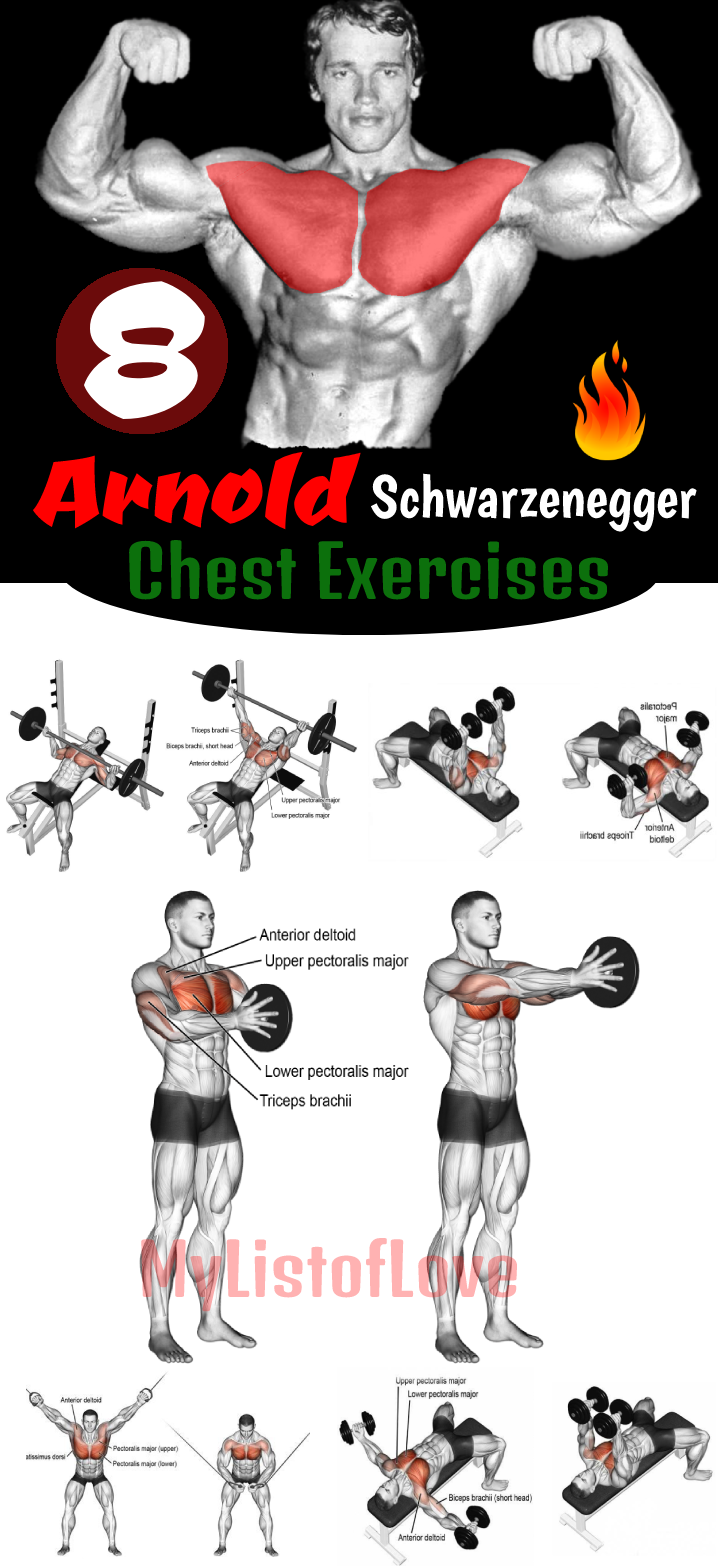 Arnold Schwarzenegger Chest Exercises #chestworkouts 8 Most powerful exercises for perfect chest......