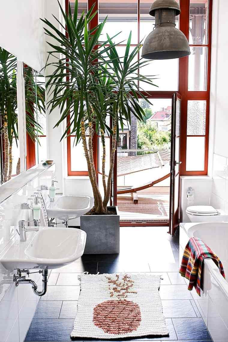 plante verte wc