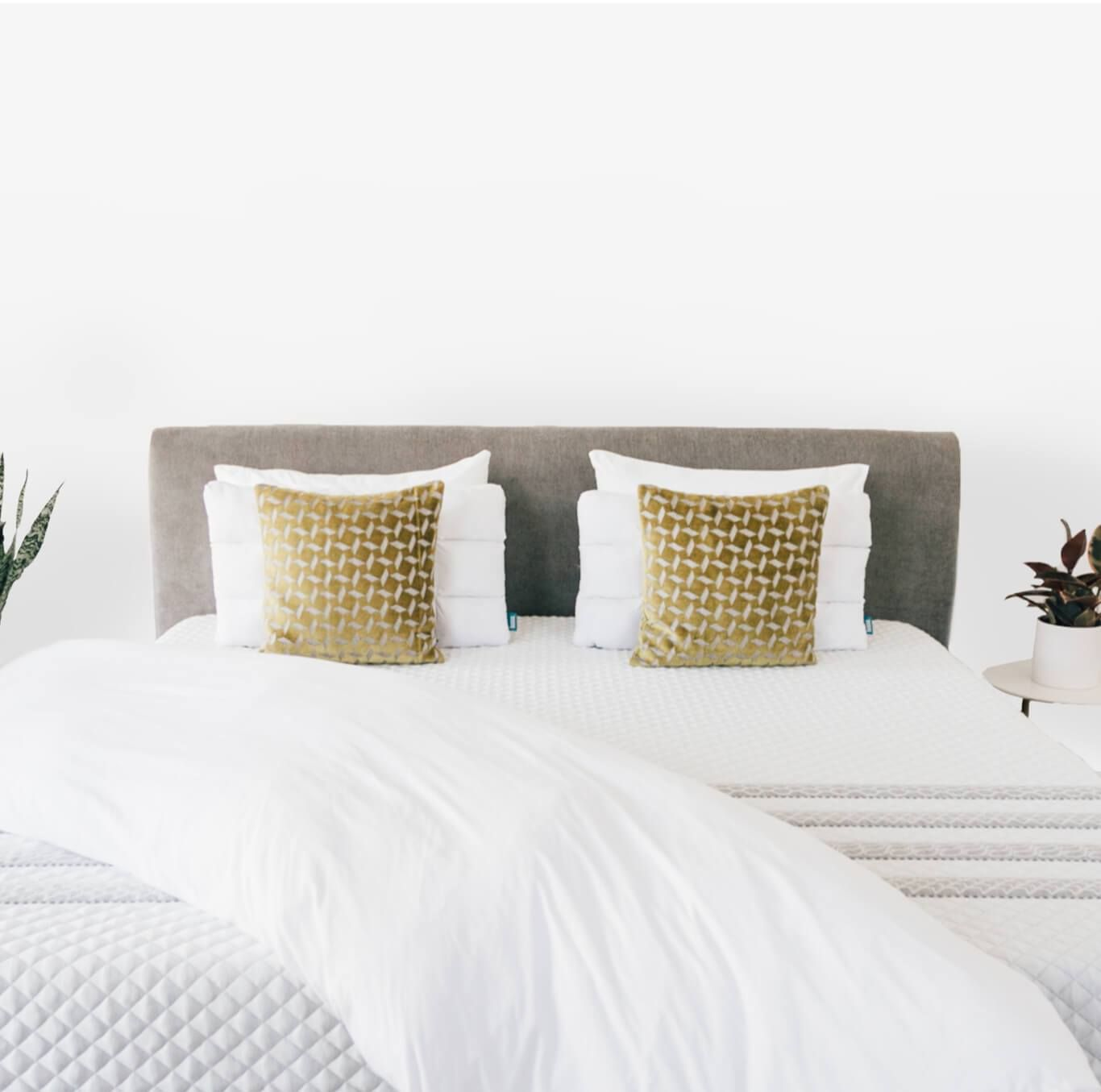 A Better Place To Sleep Try Risk Free For 100 Nights Leesa Online Mattress Leesa Mattress Mattress
