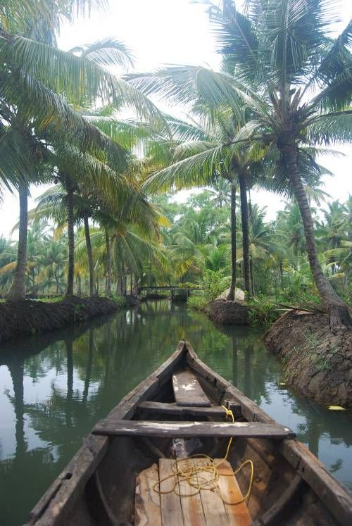 Come take a trip with me..Kerela Backwaters, #India