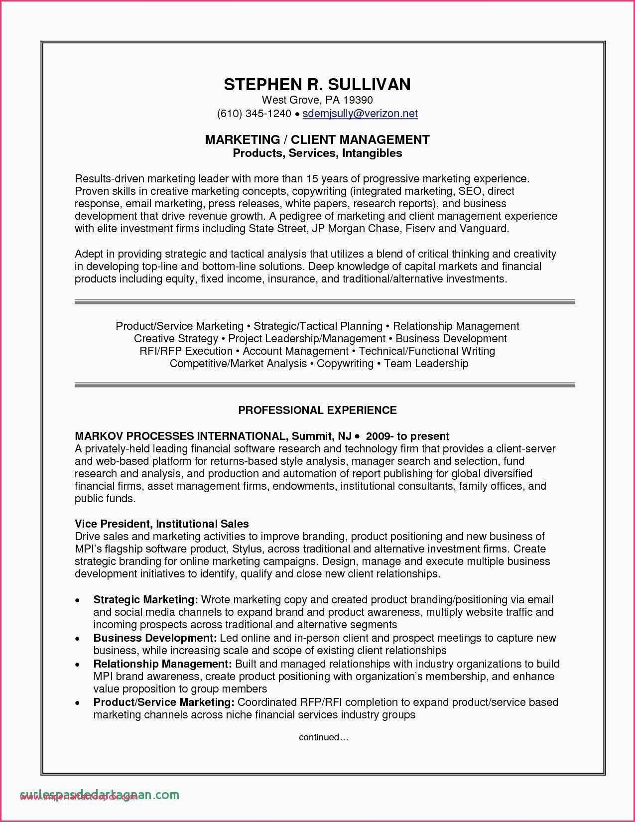 Resume Professional Writers Reviews Unique top Resume