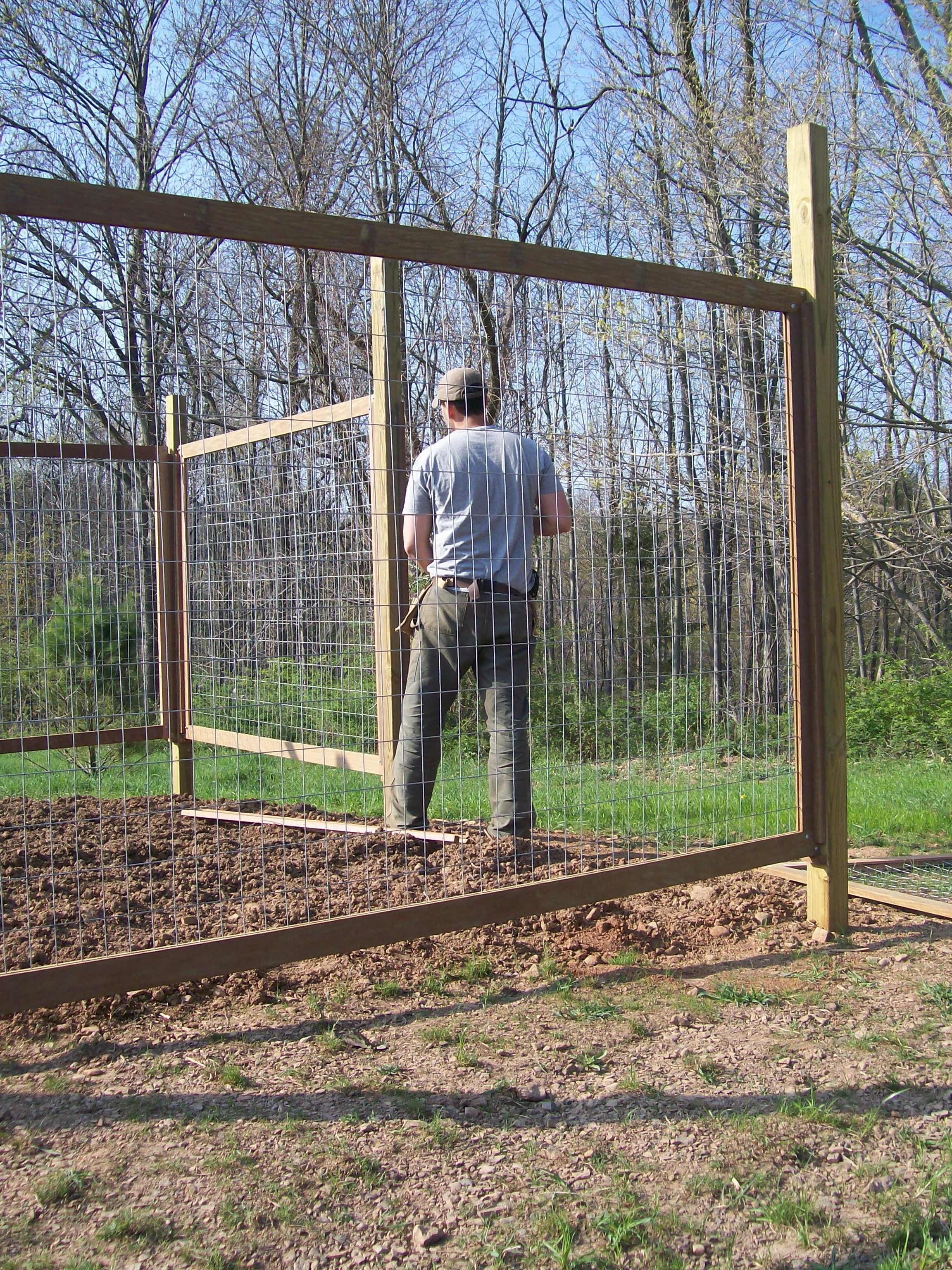 Vegetable garden deer fence ideas - Fence For Our Vegetable Garden