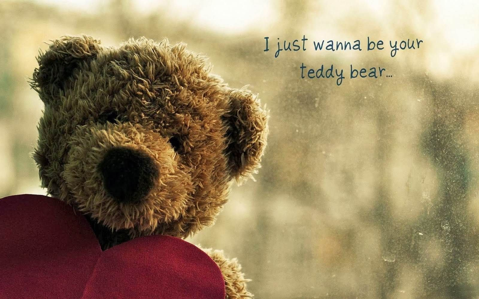 iphone s, c, teddy bear wallpapers hd, desktop backgrounds 1600×1000