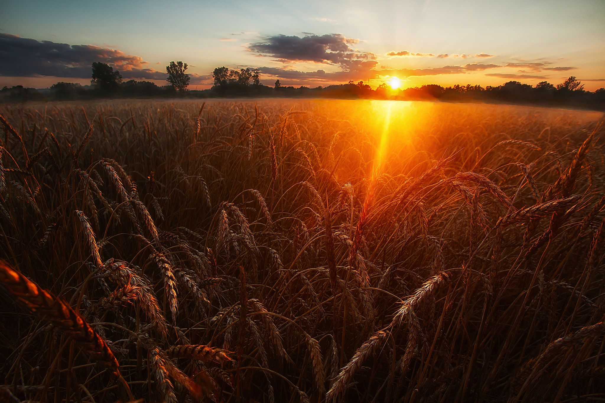 Картинки закаты в поле