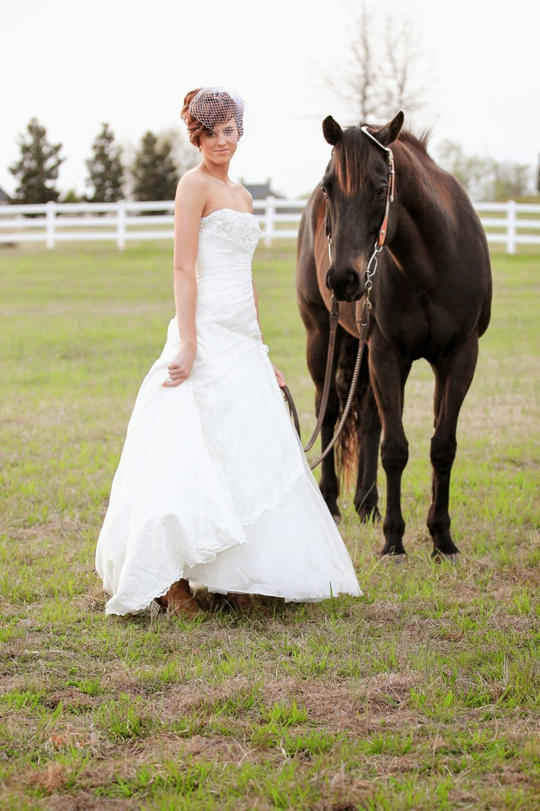 Bridal picture with horse