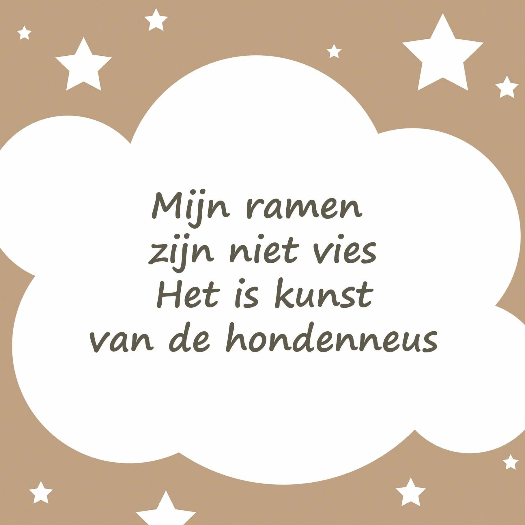 Tegeltjeswijsheid.nl - een uniek presentje - Mijn ramen zijn niet vies Geschenk, Lachend