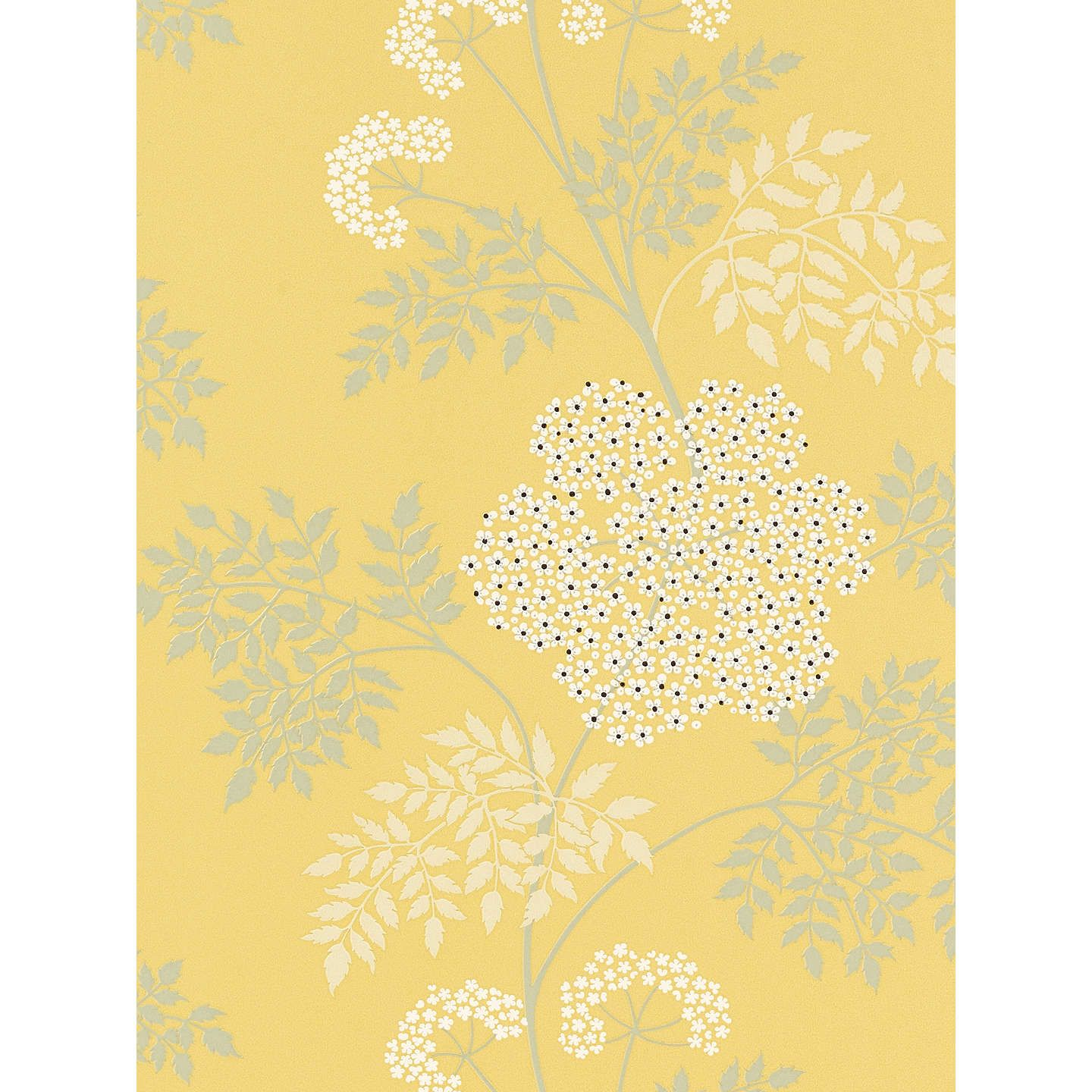 Sanderson Chinese Peony Wallpaper, Yellow, 212135 in 2020