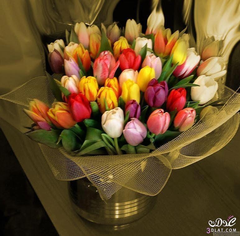 باقات تجنن باقات طبيعي رووووعة أجمل 13795826431 Jpg Beautiful Roses Arabesque Design Flowers