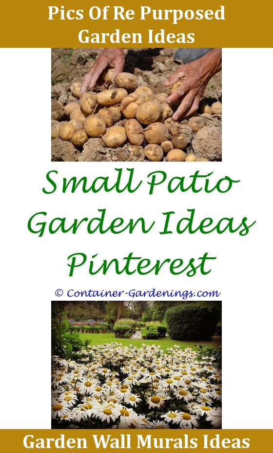 Gargen Gardening In Idaho Tips School Garden Project Ideas Tipping ...