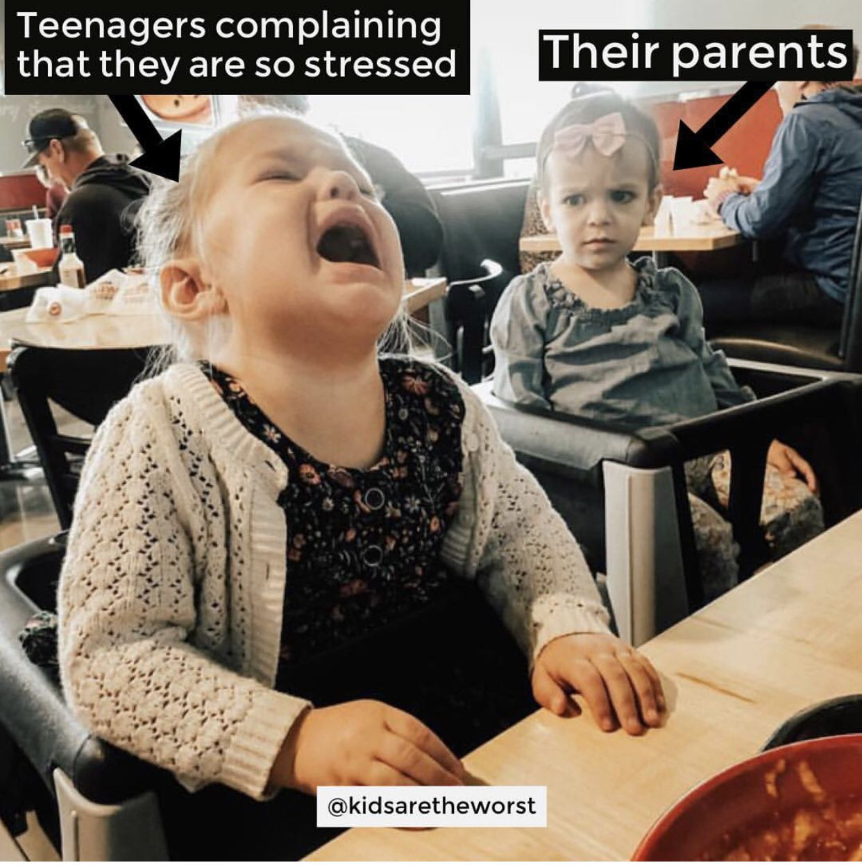 Parenting Is Tough Meme