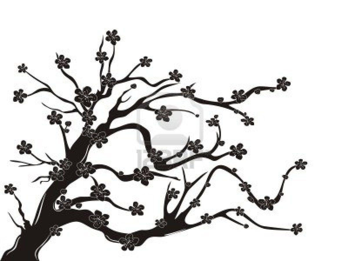 The Silhouette Of Cherry Blossom Tree On White Background Tree Silhouette Cherry Blossom Tree Japanese Cherry Blossom