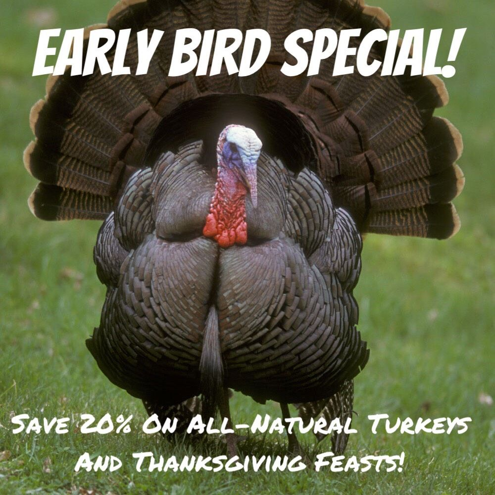 For a limited time only! Happy thanksgiving memes, Funny