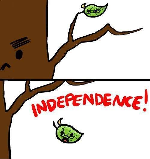 FREEDOM!!!!!