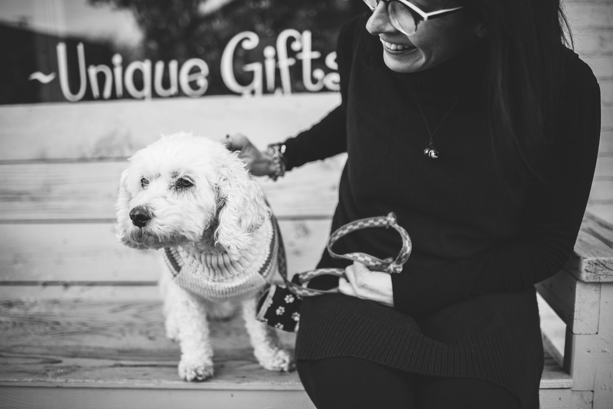 Sylvania Pet Photography Rosie The Bichon Cocker Downtown Sylvania Ohio Girl Dog Animal Photography Pet Photographer