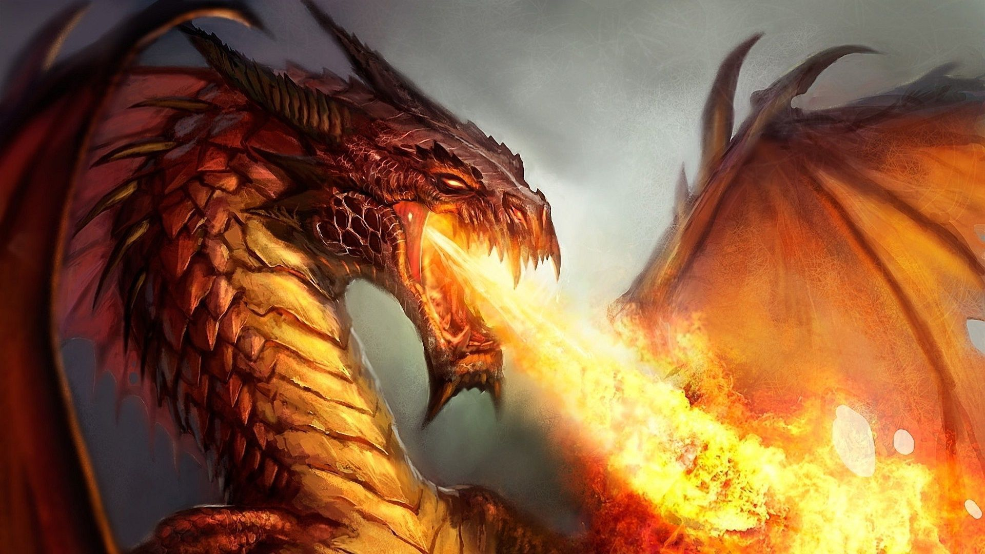 dreamy fantasy wallpaper fire dragon wallpapers hd free