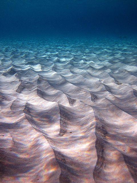 Underwater Landscape Ocean Nature Underwater