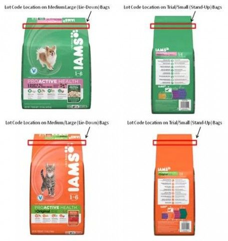 Recall Alert P Is Voluntarily Recalling Some Lots Of Iams Dry Dog
