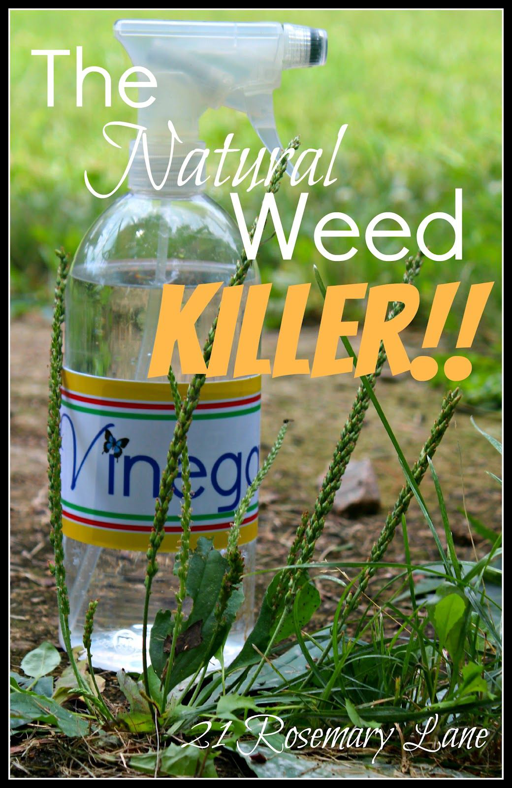Killing weeds with vinegar plus a cute bottle lable for you