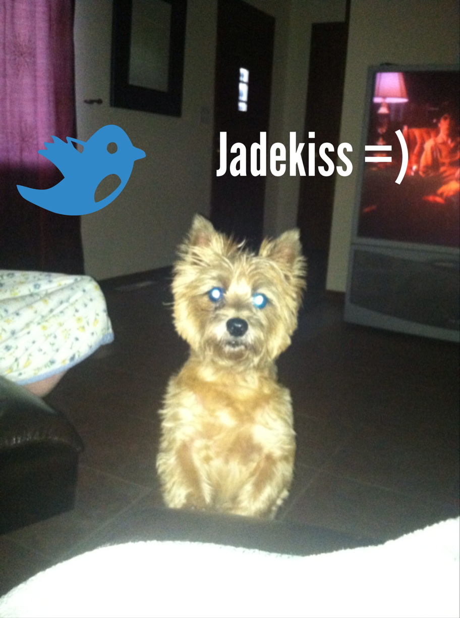 I put text on this photo with an app called Over #madewithOver