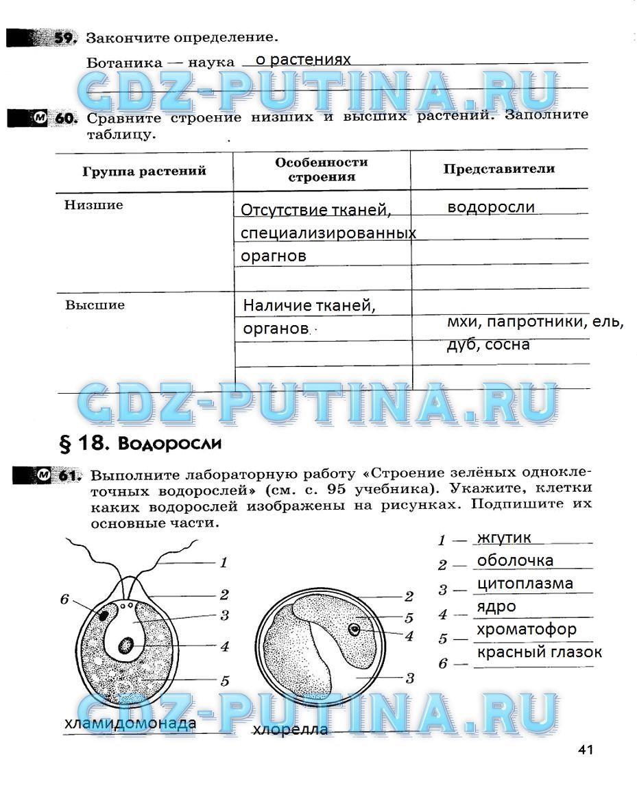 Гдз по биологии 6 класс рабочая тетрадь пасечник спиши.ру без скачивания