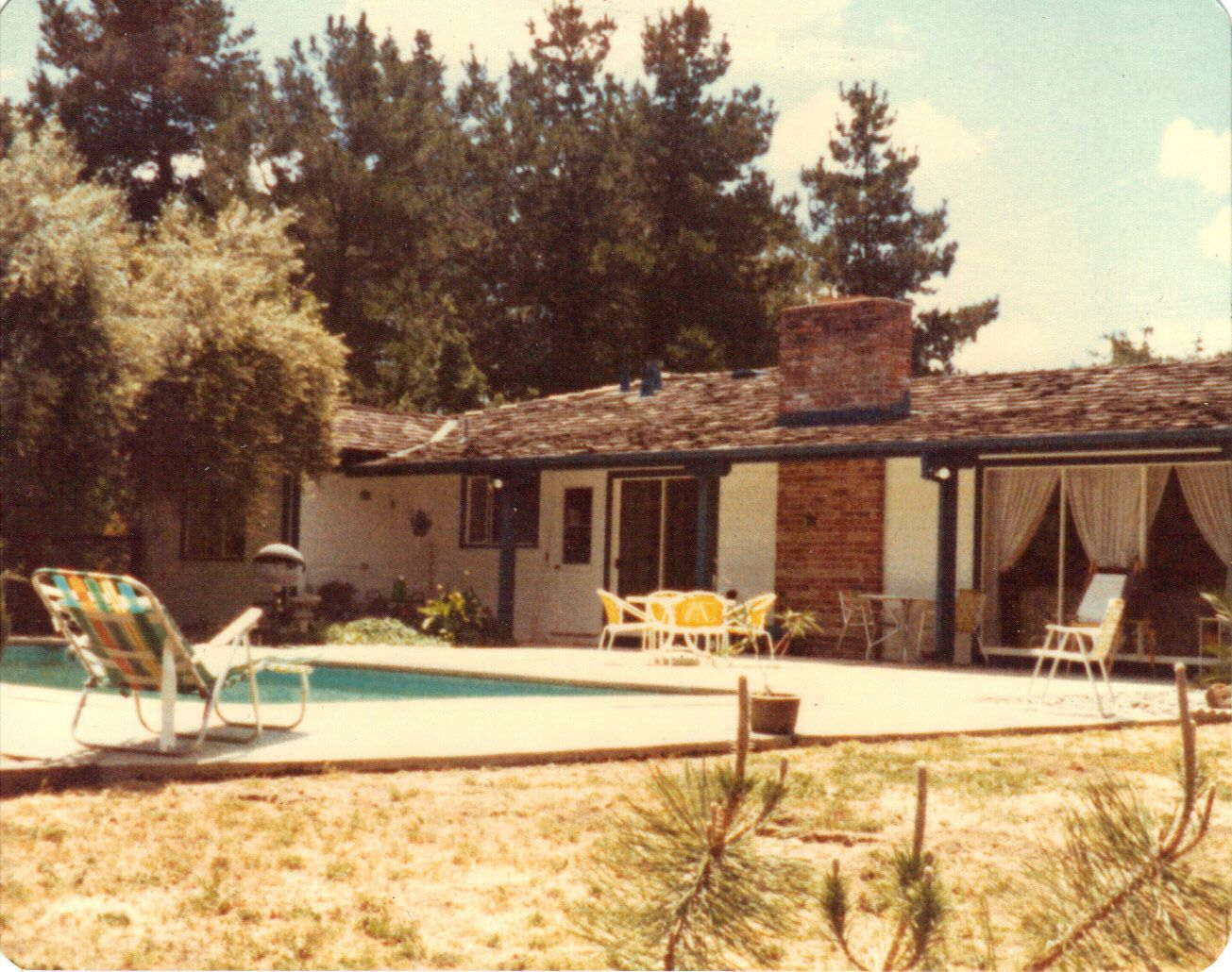 The rear of the Lafayette property.  Back behind the pool, it sloped down a ravine to a creek.  We had many wildlife visitors while we lived there.