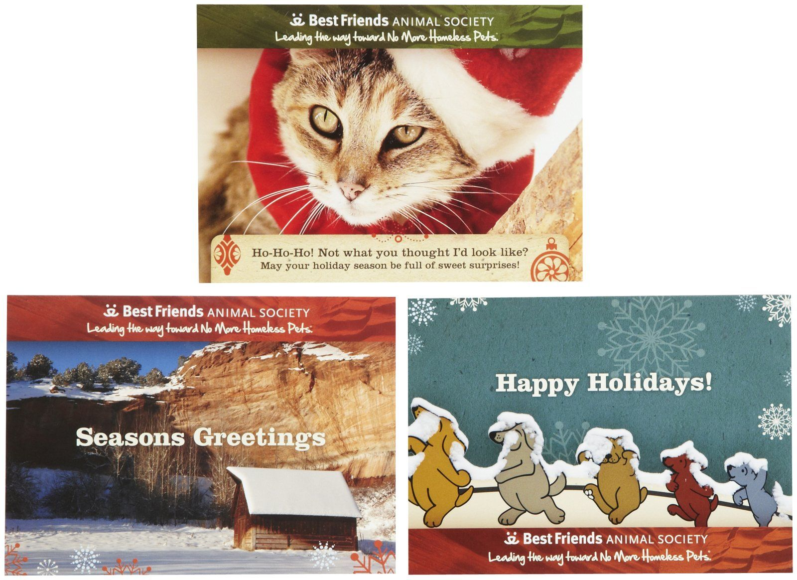 Best Friends Animal Society Holiday Cards Free Shipping Free Holiday Cards Holiday Cards Holiday Greeting Cards