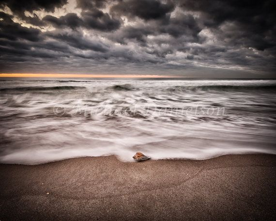 Sea Shell and the Sea Beach Photograph Print by MDanielsonPhoto, $24.00