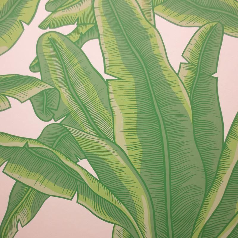 Clarence House Wallpaper 8870-1 Lyford Key Green