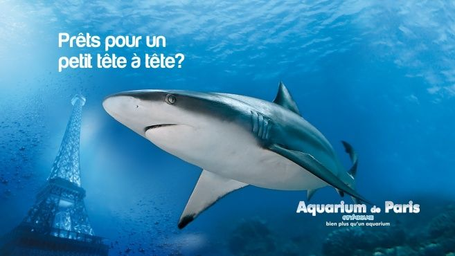 Aquarium de Paris - Cinéaqua