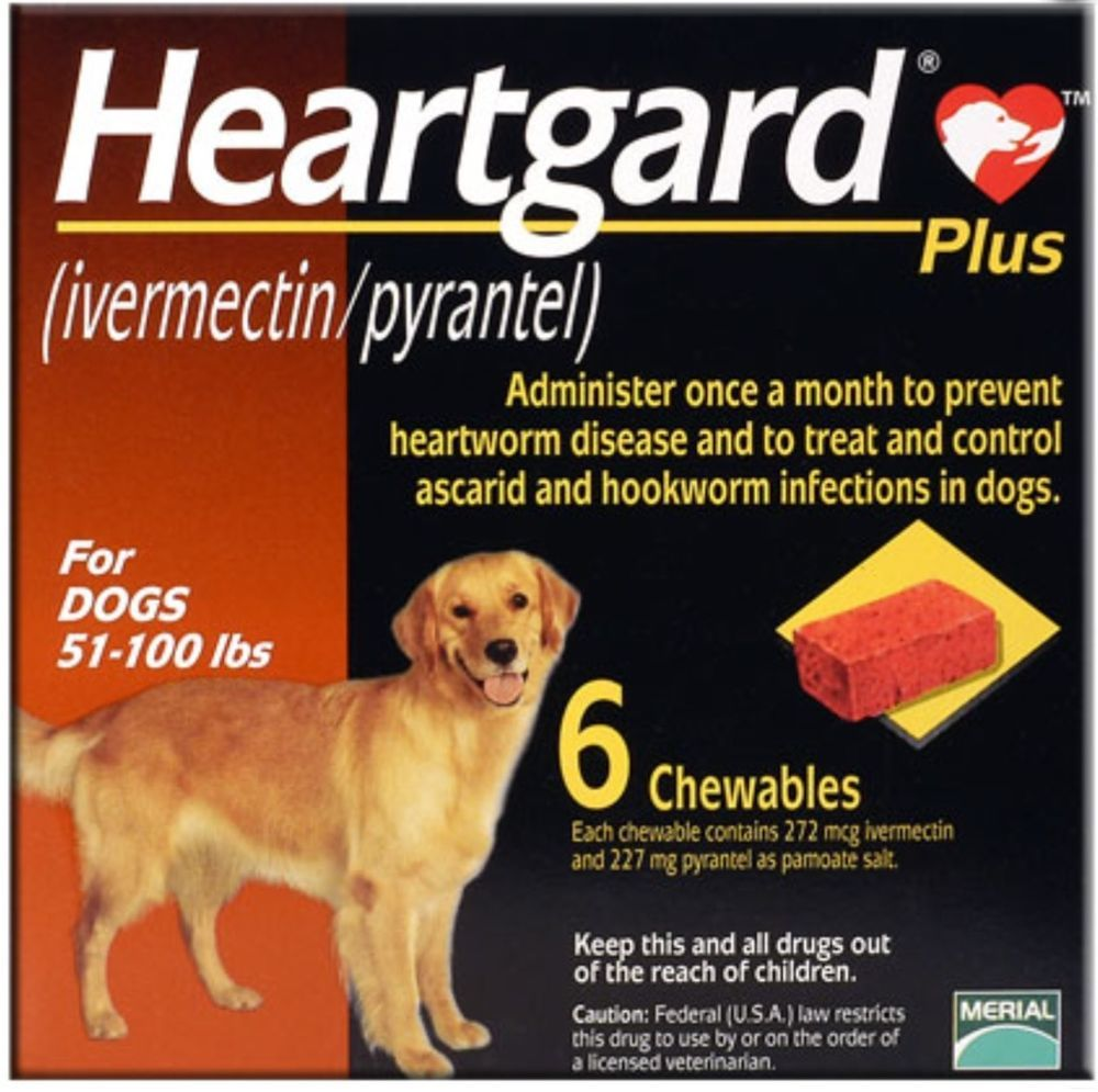 1 Box New Heart Guard Plus Chewables 6 Doses For Dogs 51 100 Pounds Heartgard Heartworm Heartworm Disease Hookworms In Dogs