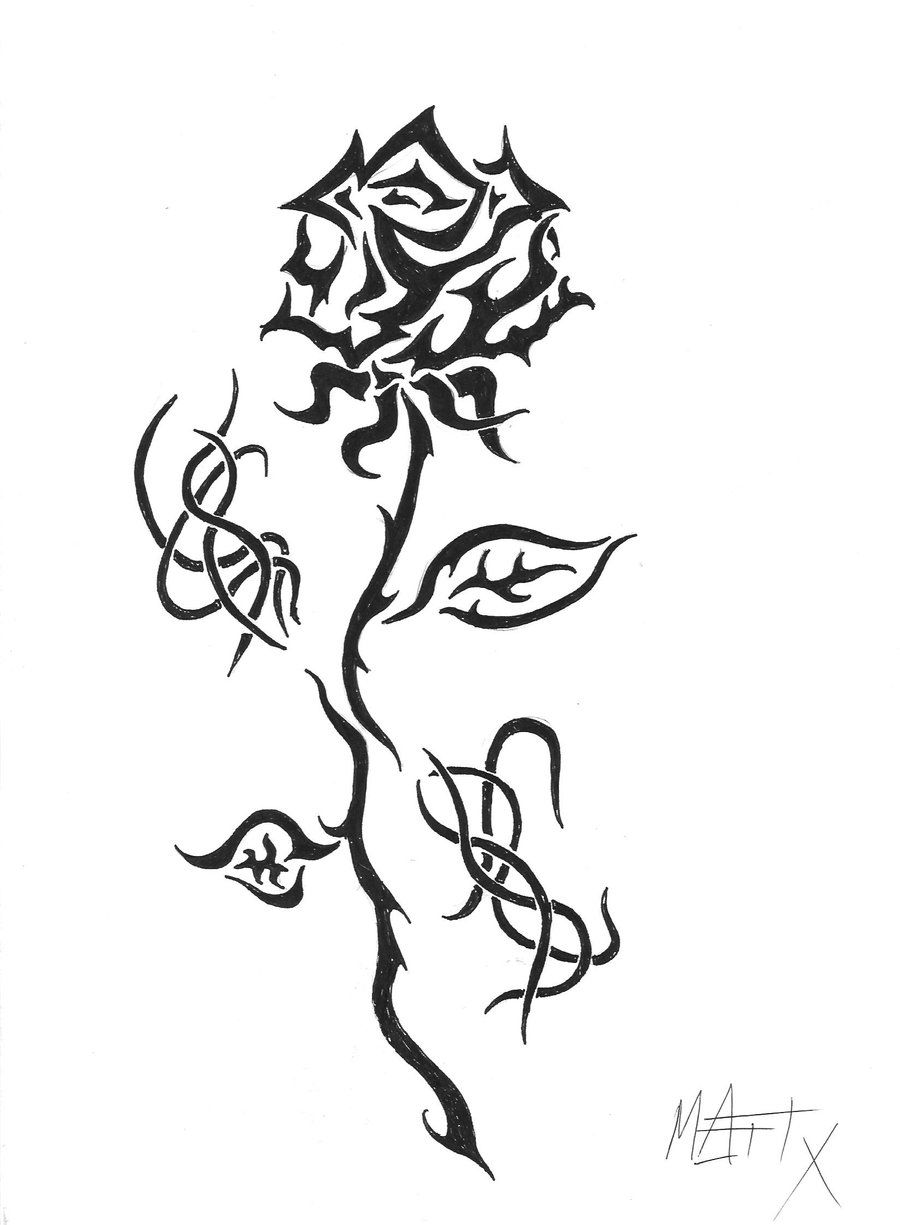 Uncategorized Small Rose Drawing tribal rose tattoo design tattoos ideas trible ideas