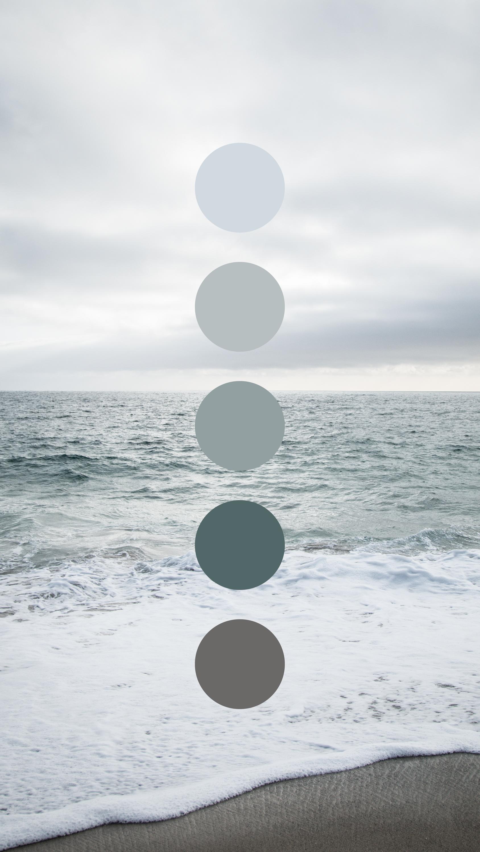 Coastal Overcast Color Palette by Amari Creative in 2020