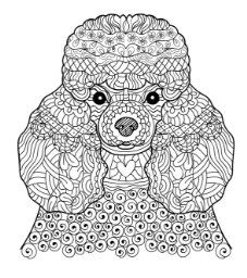 coloriage art therapy 5 Pinterest Beautiful dogs Adult