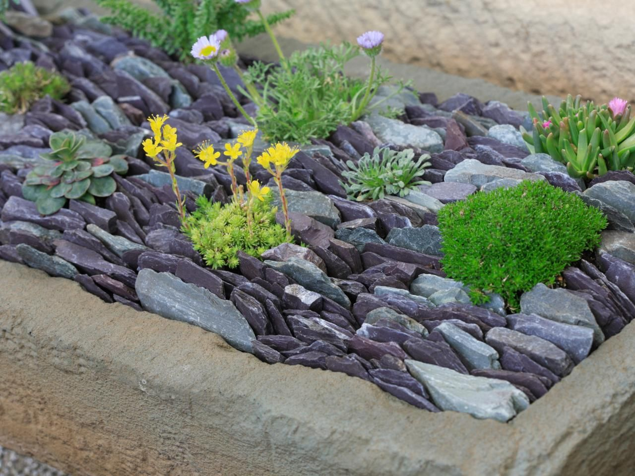 slate chips landscaping - google search | farmhouselandscaping