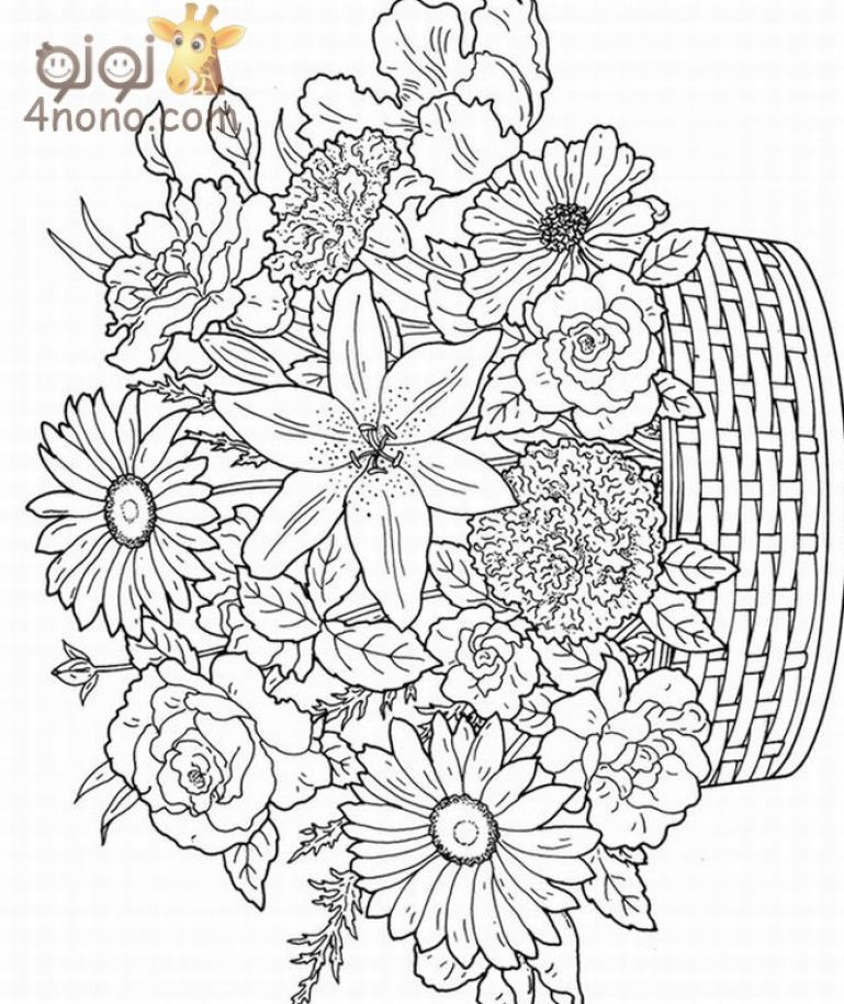 Free-printable-coloring-pages-for-adultsjpg (769×915 - copy free coloring pages of hibiscus flowers